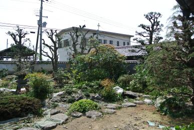 201304 南あわじ市北阿万 剪定2-a.jpg